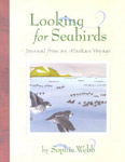 looking-for-seabirds.jpg